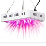 Recordcent 600 grow light LED for indoor