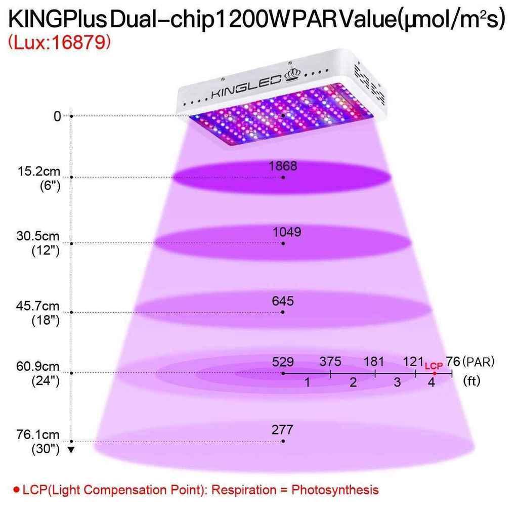 PAR - King Plus 1200 Watt LED Grow Light Review