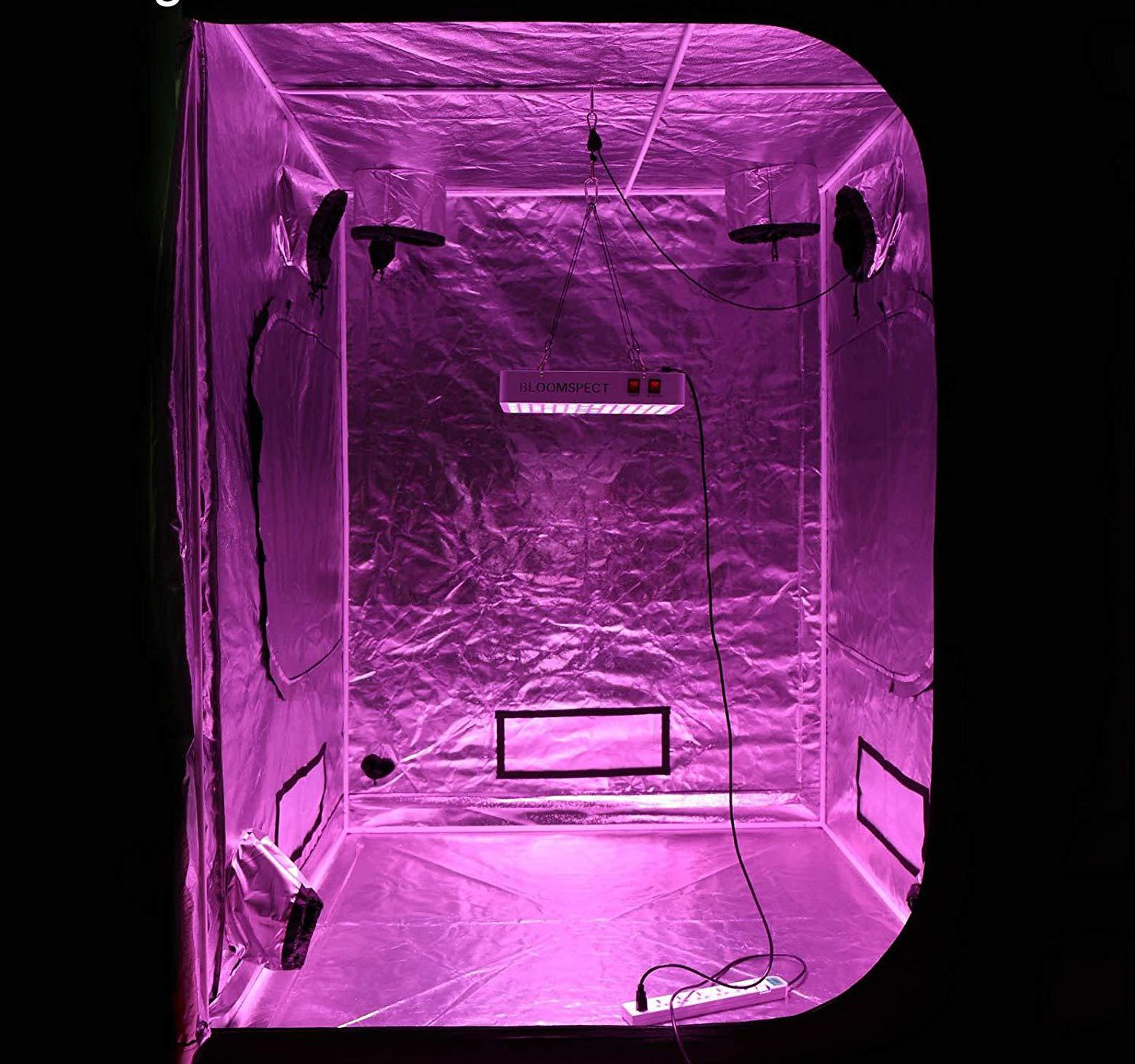 Inside Grow Tent - Bloomspect LED Review