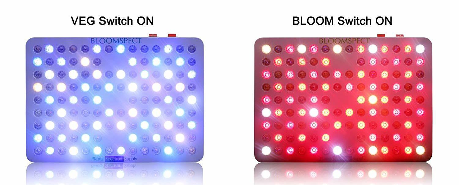 Spectrum of BS600 600W LED Review