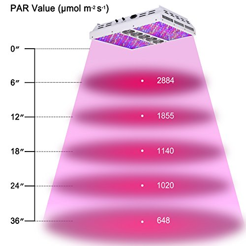 Best LED Grow Lights For Your 4X4 Grow Tent in 2019