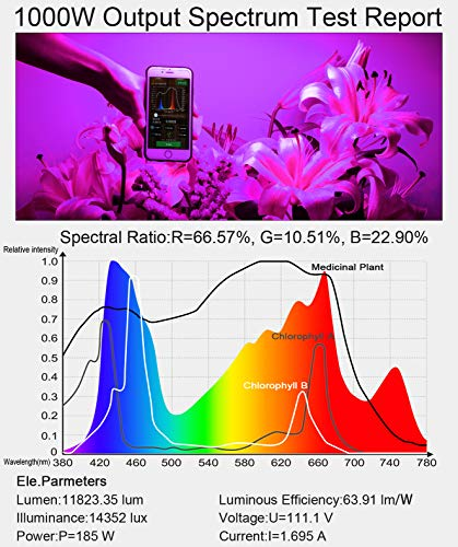 King Plus 1000W LED Grow Light - Pictures, Specs, and More