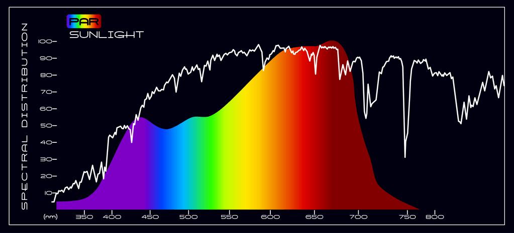 hps vs led grow light