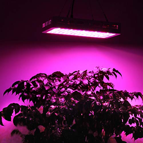 Bestva 1200W Samsum LED Grow Light - 2020 Overview