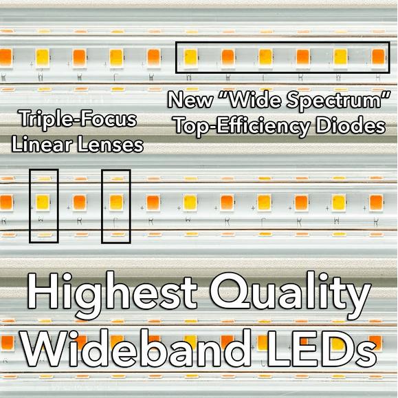 ES300 LEDs