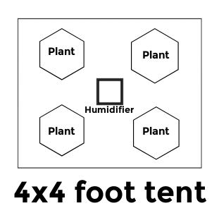 Four plants grow tent size