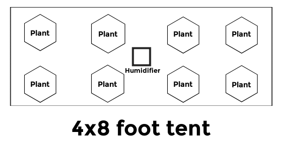 6 to 8 plants grow tent size