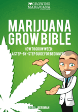 grow weed ebook