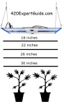 grow light height