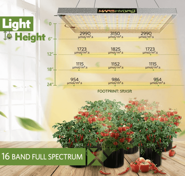 grow light for 4x4