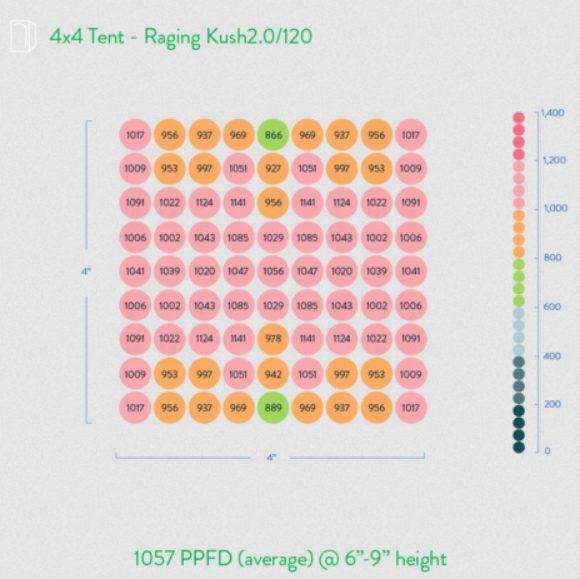 raging kush 2.0 ppfd map
